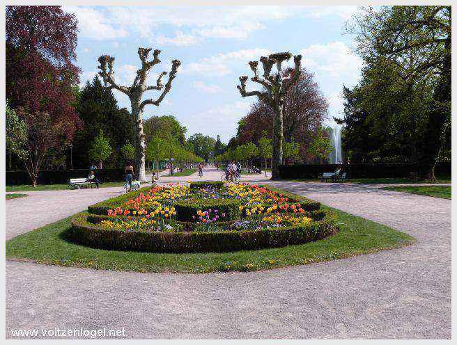 Parc Orangerie de Strasbourg un Jardin botanique en Alsace
